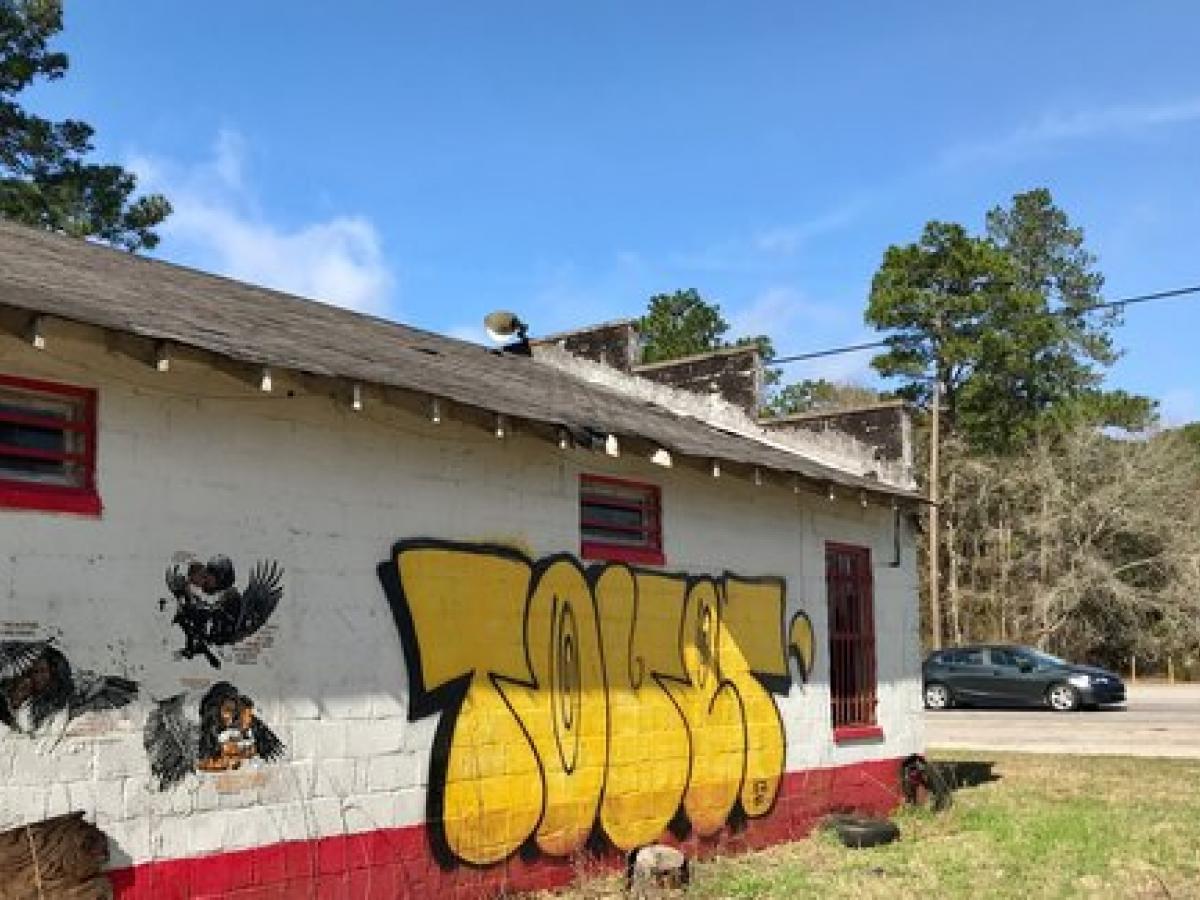 Old Savannah Highway, South Carolina - Art in Public Spaces