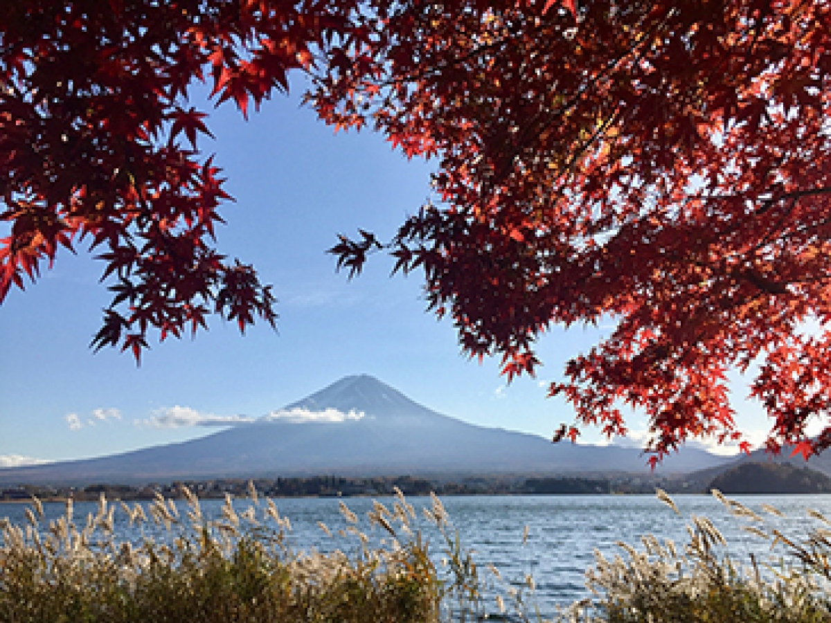 Mount Fuji in Fall, Hakone, Japan, by Katharine Schluntz, Special Prize, Reischauer Institute of Japanese Studies.