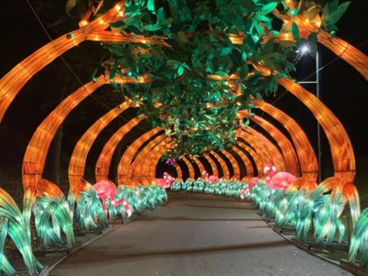 Color photograph of tunnels by artist Arianna Y