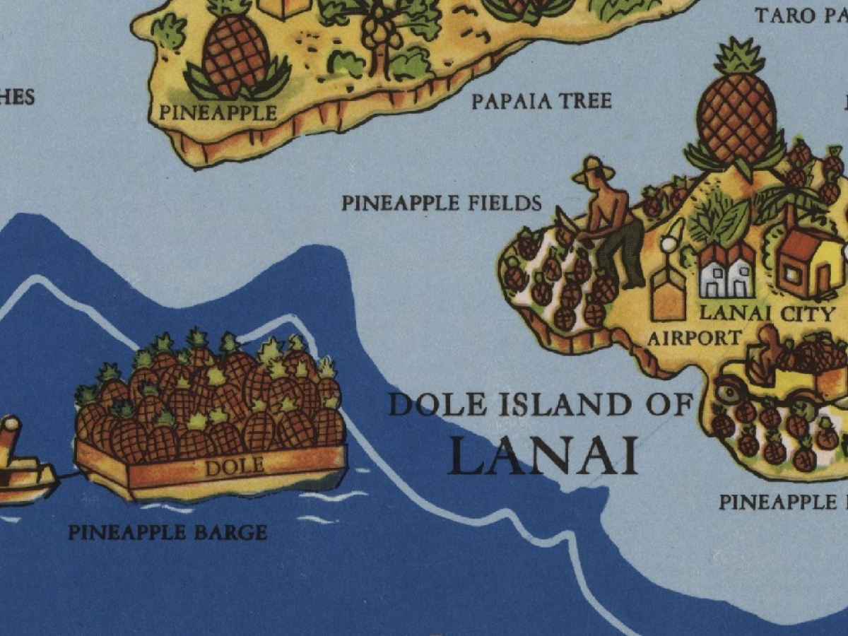 Dole Pineapple Map detail
