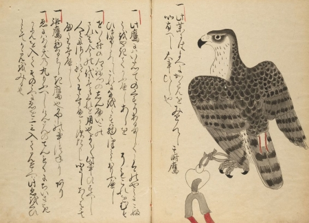 An item from the Harvard-Yenching Library's Japanese Collection.