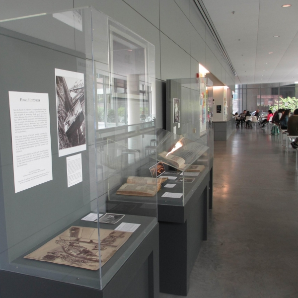 Fossil Histories exhibit cases at Northwest Science Building.