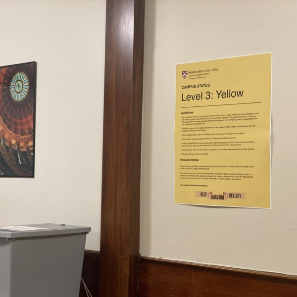 "Harvard ""Level 3 Yellow"" sign on a wall"